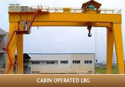 Licence to operate a bridge and gantry crane